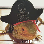 Pirate Costume for Bearded Dragons, Reptiles, and Small Animals.