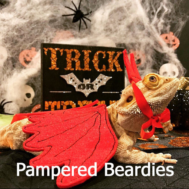 Devil Costume for Bearded Dragons, Reptiles, and Small Animals!