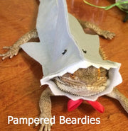 TOP SELLER!  Shark Costume for Bearded Dragons and other Reptiles! Now in 3 sizes!!