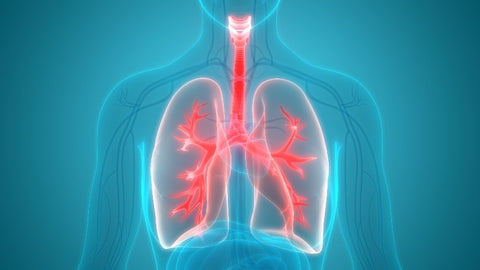lung health