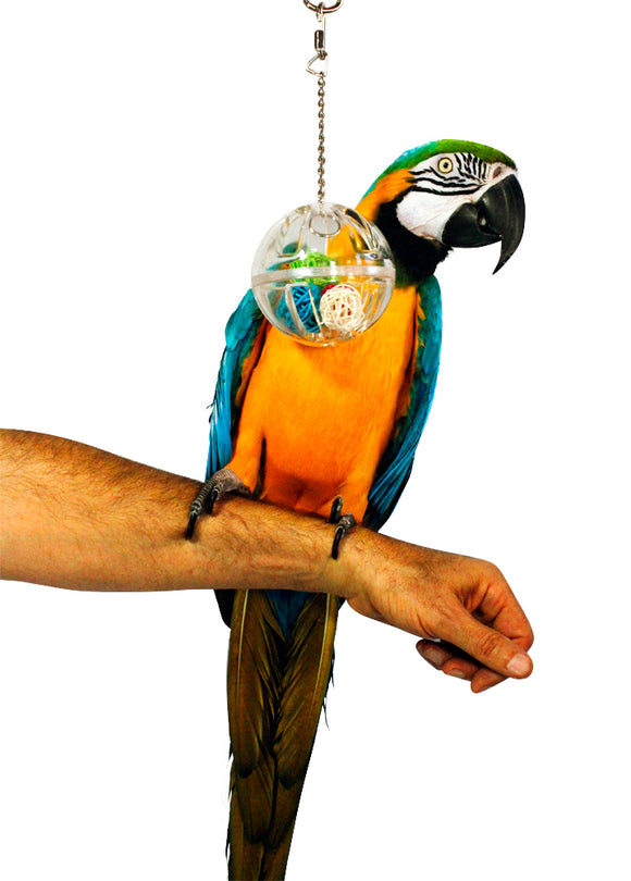 PB19007A (Bird Toy Fillable Ball w/ 4 different color balls inside. Size 7.6cm Di...