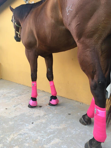 Elastic Polo Bandages / Wraps - Pink Set