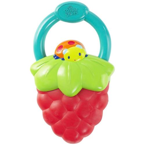 Bright Starts Vibrating Teether Assortment