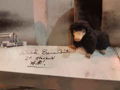 Needle Felted Niffler on wing of plane signed by Dirk Benedict
