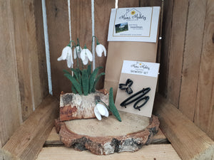 Needle Felting flowers snowdrops Kit & Template combo