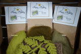 needle felted fern kit colours Autumn Green Willow Leaf