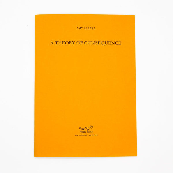 Amy Allara, A Theory of Consequence