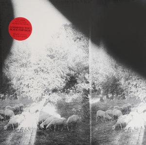 Godspeed You! Black Emperor - Asunder, Sweet and Other Distress LP