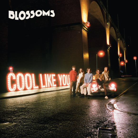 Blossoms ‎- Cool Like You CD