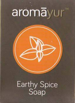 100g Earthly Spice Soap