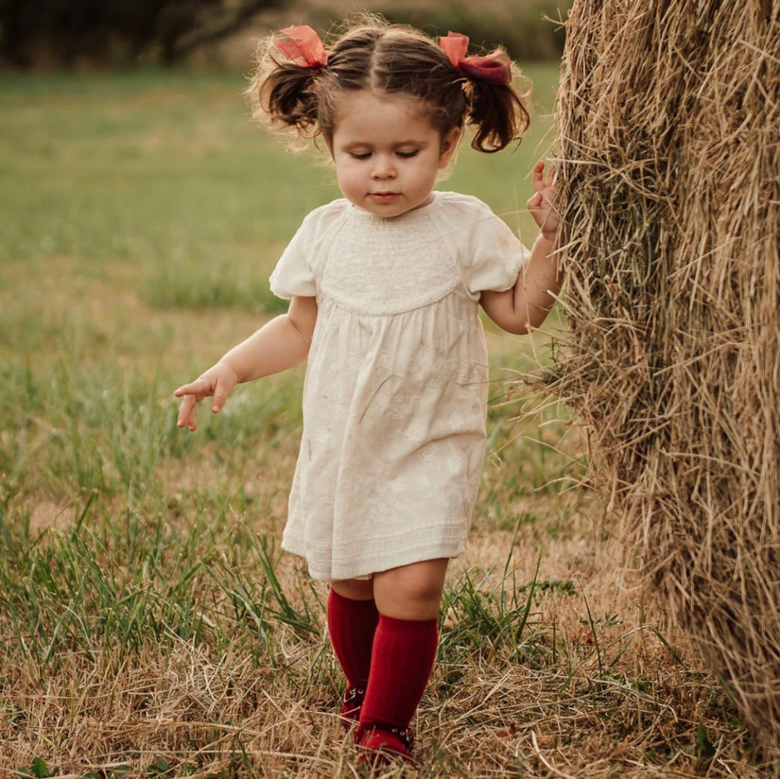 Knee high socks ribbed.  Cranberry