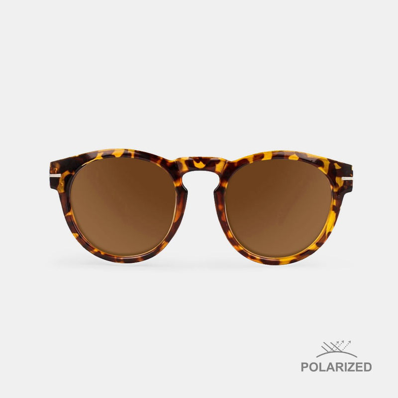 Rem Carey / Brown Polarized