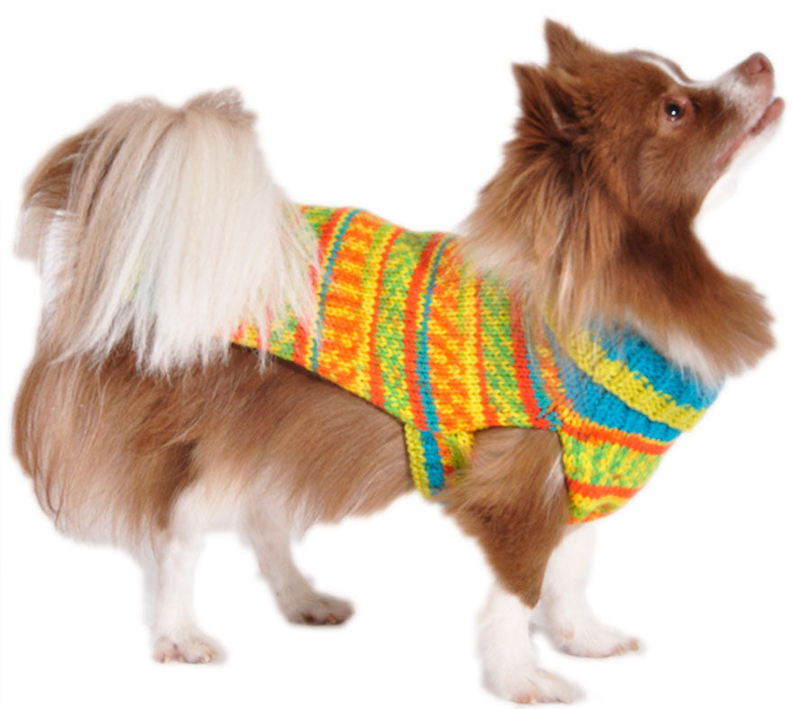 Bright Fall Dog Sweater