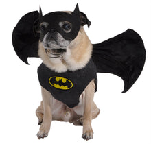 Dog Batman Costume - Wings and Mask Only
