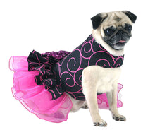 Party Dog Dress Black with Hot Pink Swirls
