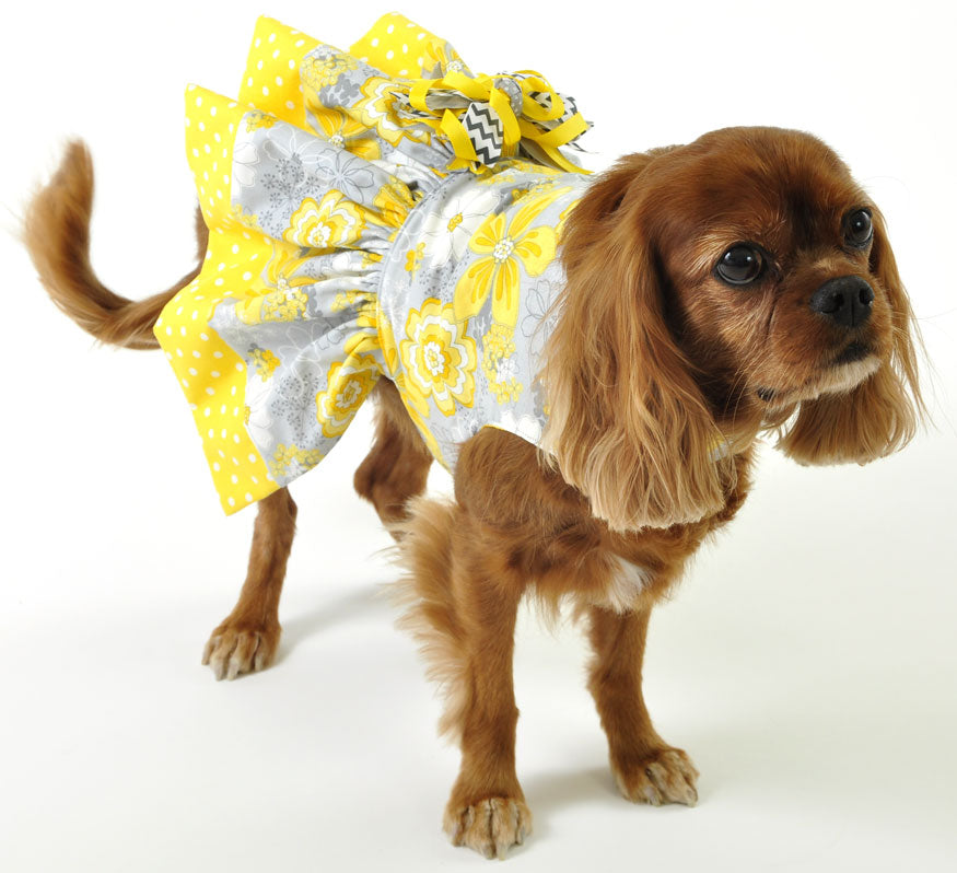 Yellow and Gray Dog Dress
