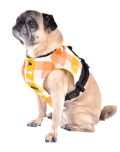 ,Dog Harness - Plaid Boy Dog Harness