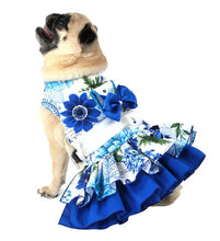 Dog Dress, Dog Harness - Blue and White Girl Dog Harness