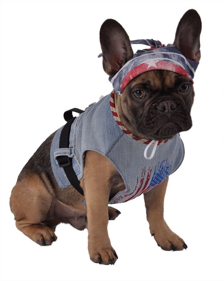 Dog Harness - American Flag