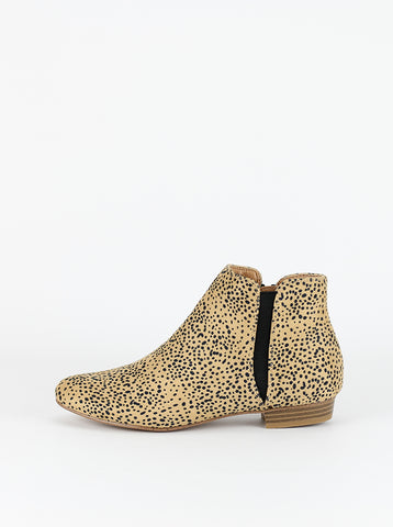 HUNTER (Camel Leopard)
