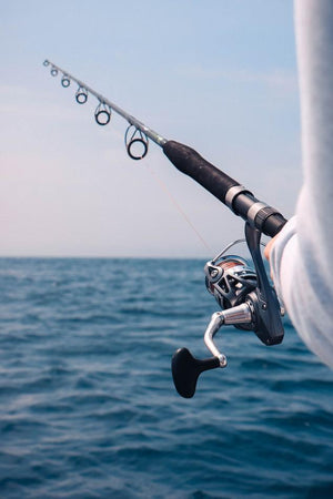 When is the Best Time to Fish?