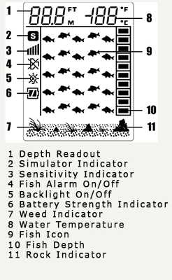 canoe fish finder