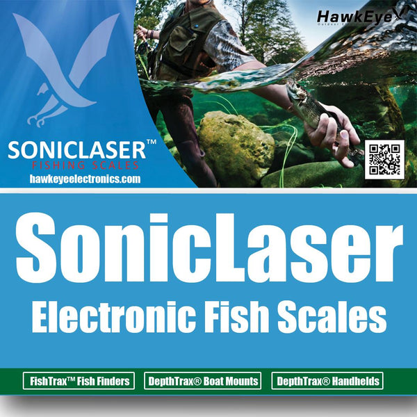 electronics fishing scale