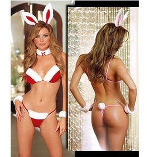 Adult Sexy Santa Christmas Bunny Outfit / Fancy Dress Costume