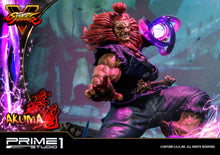 Load image into Gallery viewer, Pre-Order: Akuma Ultimate Version