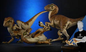 Crash McCreery's Baby Raptors