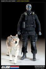 Load image into Gallery viewer, SNAKE EYES and TIMBER SIXTH SCALE