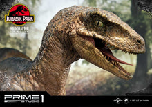 Load image into Gallery viewer, Pre-Order: Velociraptor Open Mouth Version