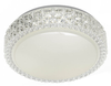 AMELIA 40 LED OYSTER   - WHITE/CLEAR