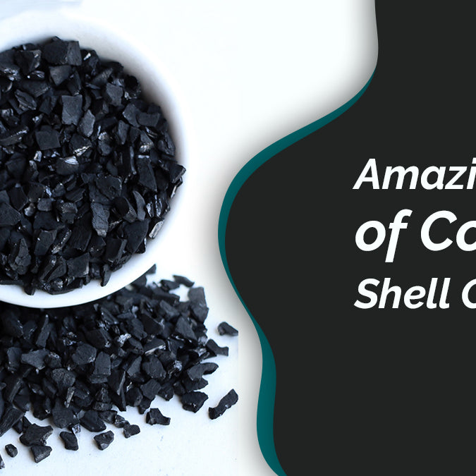 Amazing Uses Of Coconut Shell Charcoal