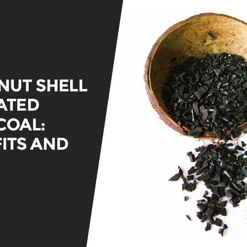 Coconut Shell Activated Charcoal: Benefits And Uses