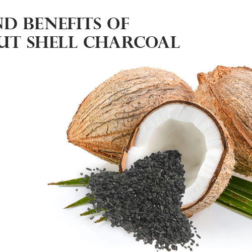 Uses and Benefits of Coconut Shell Charcoal
