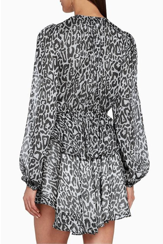 Leopard Dress - Clothing