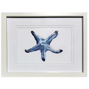 Blue Starfish Watercolour Print - Small