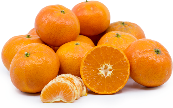 Indigo (Big Tangerines)