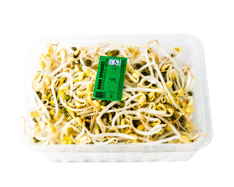 Bean Sprouts 300g