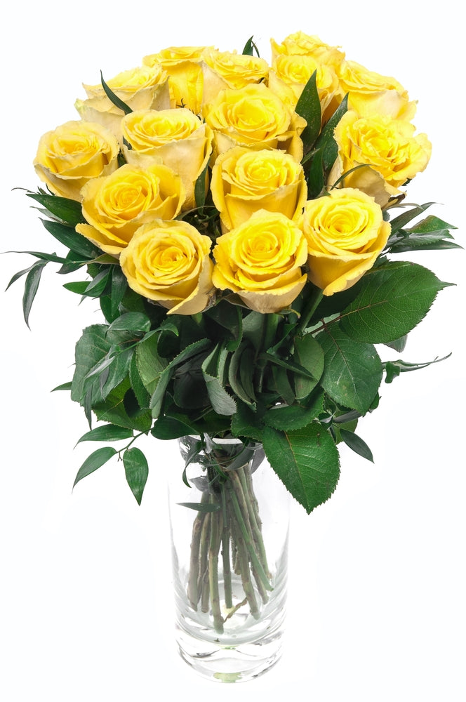 Yellow Roses - 20 Stems