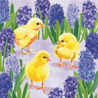 Chicks in Hyacinth