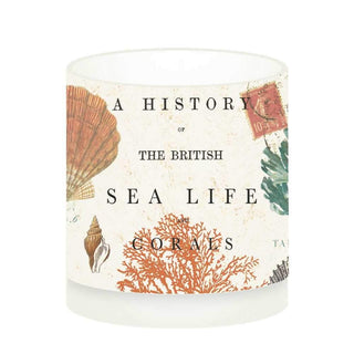Sea Life Boxed Tea Light Holder (min.6)