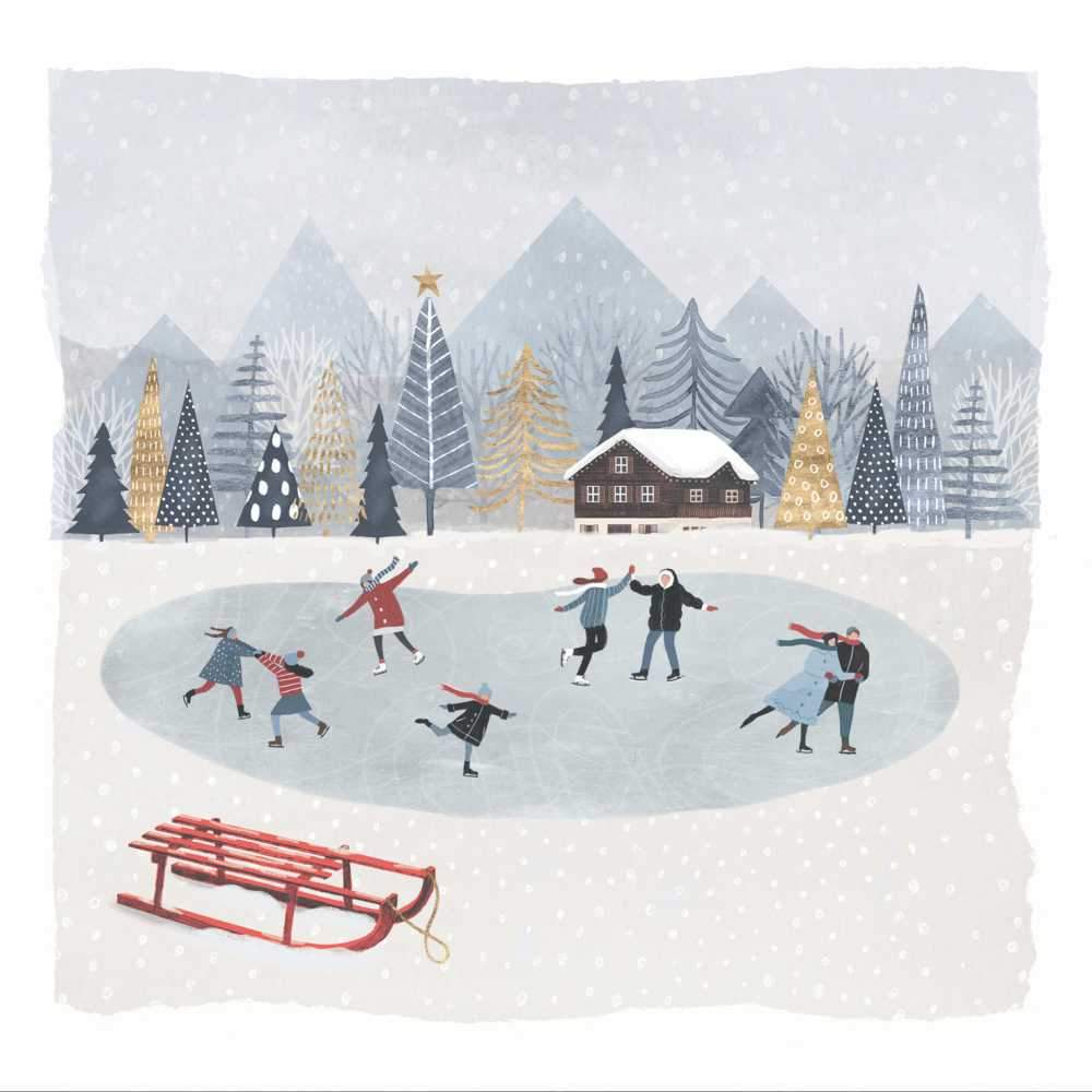 Mountain Skating Napkins