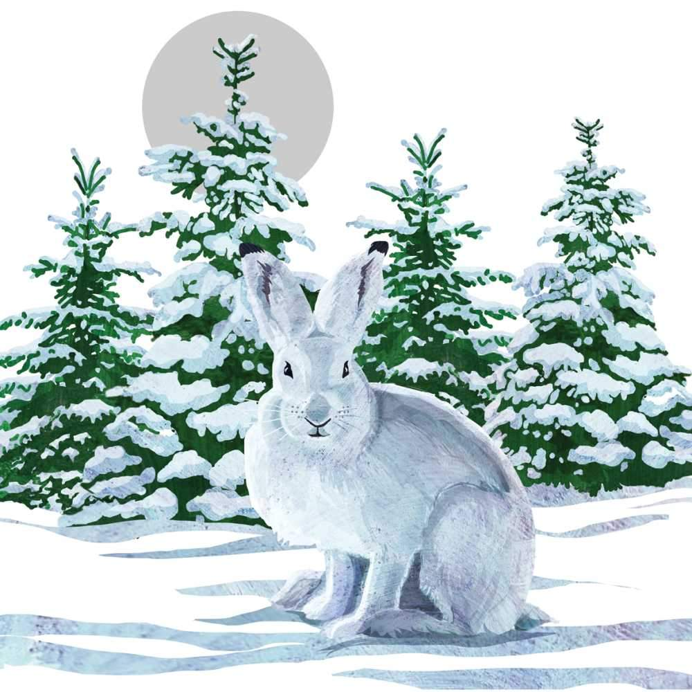 Snow Rabbit Napkins