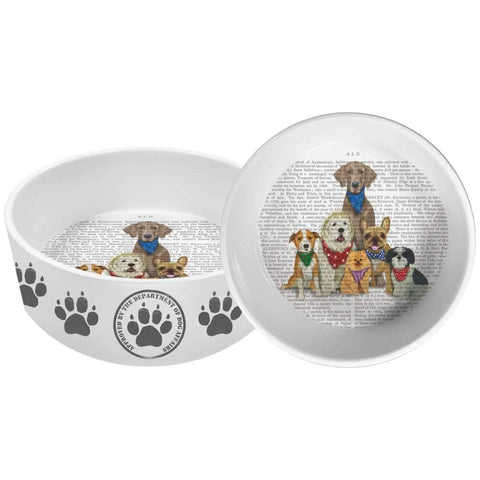 "Paw Paw Gang 8"" Pet Bowl"