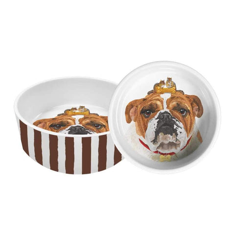 "Reggie 8"" Pet Bowl"