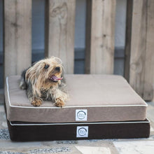 Waterproof orthopedic pet bed - Pet's Welfare