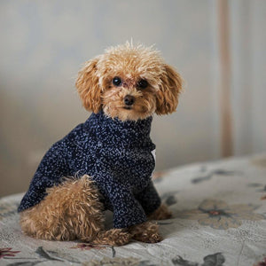 Pet dog cat wool sweater - Pet's Welfare