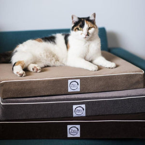 Waterproof cat bed - Pet's Welfare